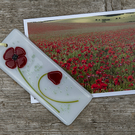 Fused Glass Poppy flower Sun Catcher with accompanying Gift card