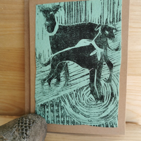 Greyhound Pair - Blank card for your own kind messages.