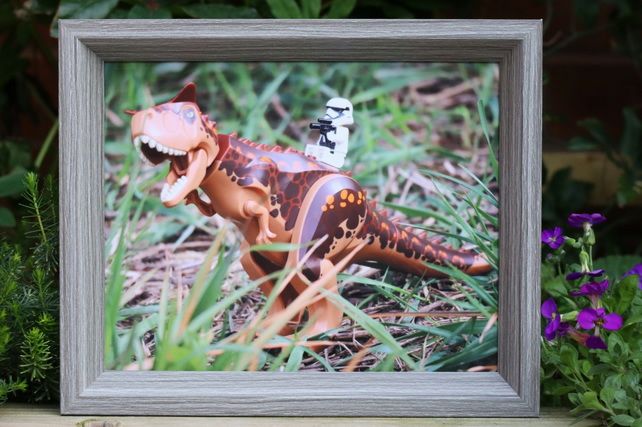 Framed Lego figures, Stormtrooper taking his dinosaur for a walk.
