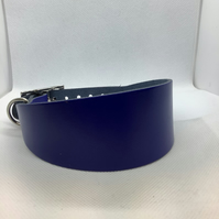 Royal Blue leather collar for greyhound or whippet