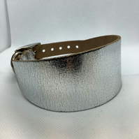 Greyhound or  Whippet collar in Silver Leather
