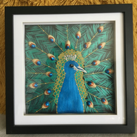 Pretty Pistachio Peacock