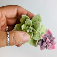 double felt succulent  hairclip LAST ONE