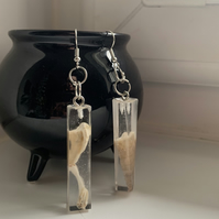 Asymmetrical Shell Earrings