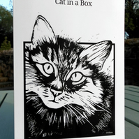 'Cat in a Box' - Pack of 5 blank greetings cards