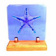Fused Glass Relief Sculpture Blue Starfish on a Ash Hardwood Stand