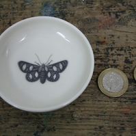 Porcelain dish with moth image