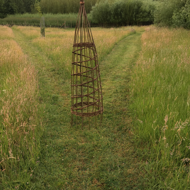 6ft Willow Wigwam Plant Support