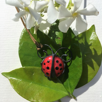Ladybird Stained Glass Pendant