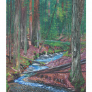 Enchanted Forest Print