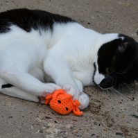 Orange Octopus cat Toy