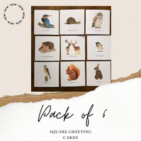 BRITISH WILDLIFE, Pack of 6 Blank Greetings Cards, Nature Card