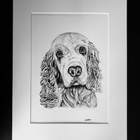 Spaniel Print - Signed and Mounted