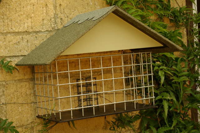 Protected Small Birds feeder with detached cage for refilling food or cleaning
