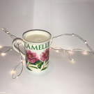 Evergreen Scented Eco Candle
