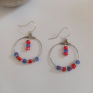 Hooped Earrings