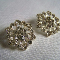 2 x Sparkly Glass Buttons (20mm)