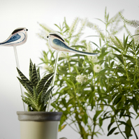 One long-tailed tit on a stem for your pot plant
