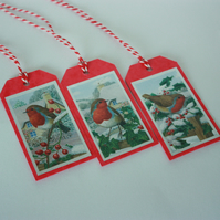 Winter robins Christmas gift tags
