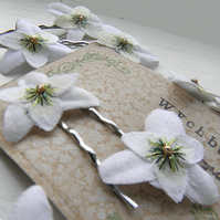 Little Snowdrop Clips