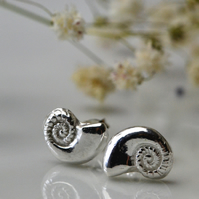 Fine silver ammonite earrings