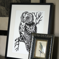 Large vintage Tawny Owl Linocut in black