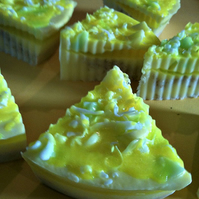 Chunky Apple, Coconut & Custard Soap