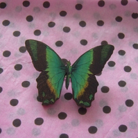 Black and Green Butterfly Brooch