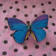 Blue and Purple Butterfly Brooch