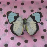 White and Blue Butterfly Brooch
