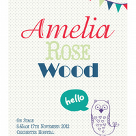 Personalised Baby's Name Poster