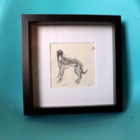 You Ain't Nuthin But A - Original Monoprint -  Greyhound