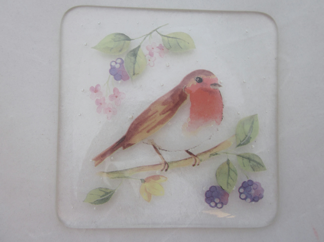 Handmade fused glass coaster - Robin with blackberries (b)