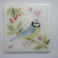 Handmade fused glass coaster - Blue tit (a)