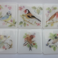 RESERVED set of 6 glass bird coasters