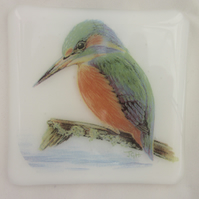 Handmade fused glass coaster - Kingfisher (a)