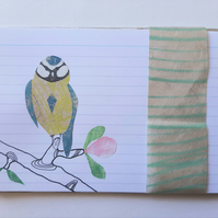 mini craft pack  - the one with the Blue Tit