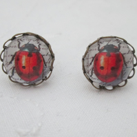 Earrings ladybird handwriting white