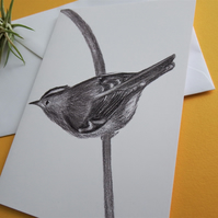 Get Well Card (blank) - Hand Drawn Goldcrest - Illustration