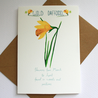 Wild Daffodil- British wild flower card
