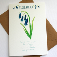 Bluebell- British wild flower card