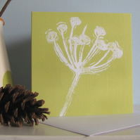 Seed Head in Green Greetings Card
