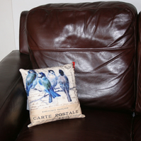 "Cushion  garden bird Washable cushion  12x12""  Blue tit bird french text"