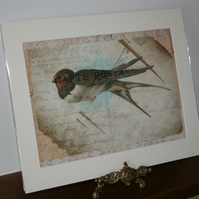 Bird, Swallow on a wire lace shabby chic print