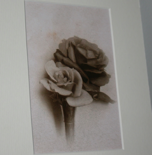Vintage rose flower art print