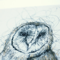 Barn Owl Pen and Ink Illustration Print 10x8 Limited Edition