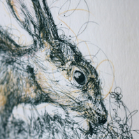 Grazing Hare Pen and Ink Illustration Print 10x8 Limited Edition