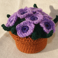 Crocheted Pot Plant