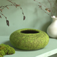 Bright Moss Green Felt Bowl - hand felted textile art