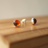 Amber Sterling Silver Stud Earrings